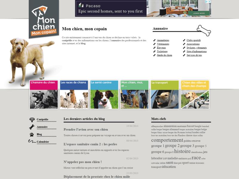 Un site sur les chiens
