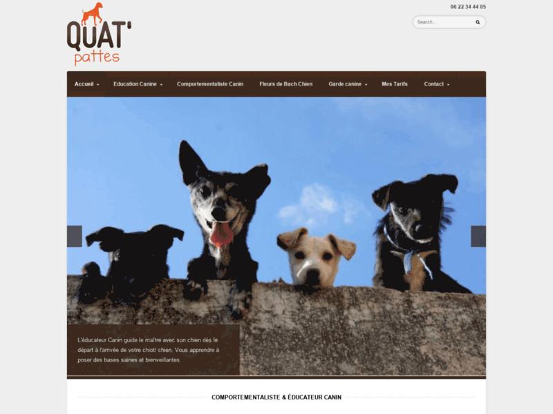 Dogsitting dans le Nord: garde chien et education canine