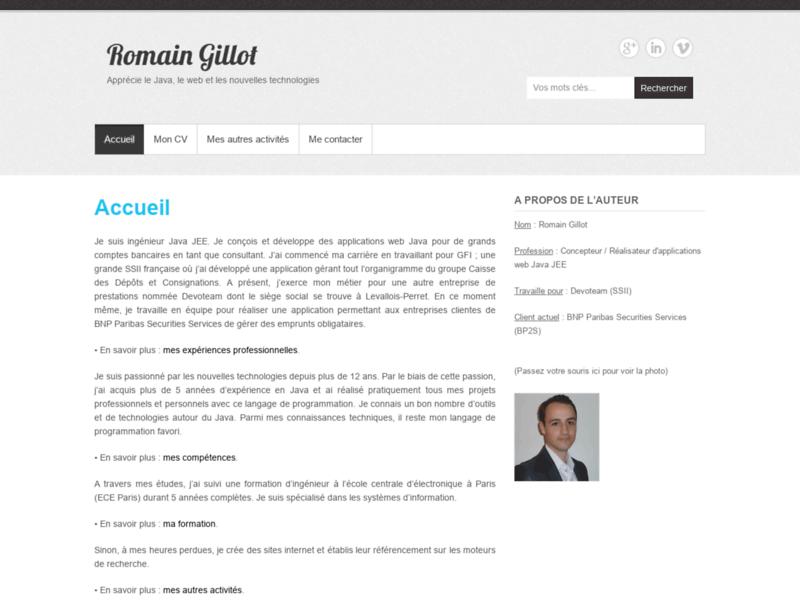 R. Gillot   Consultant Informatique