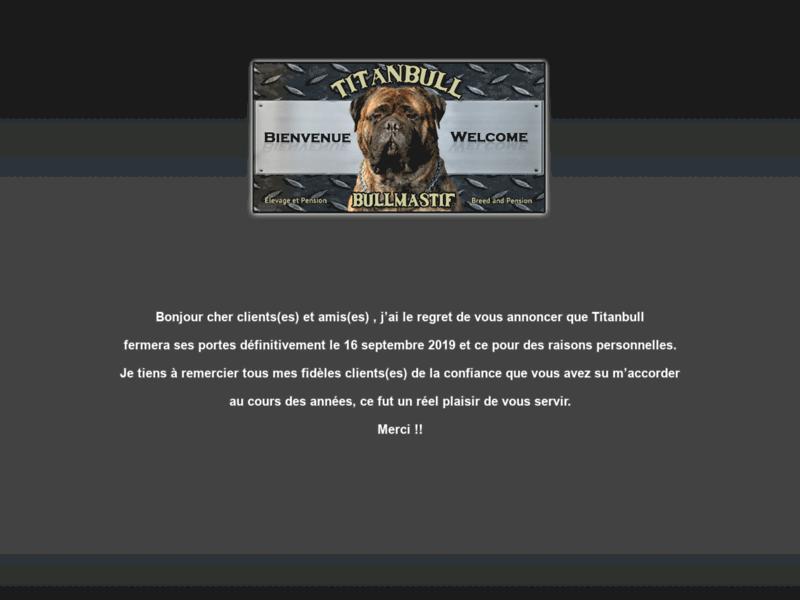 Élevage de chien de race bullmastiff