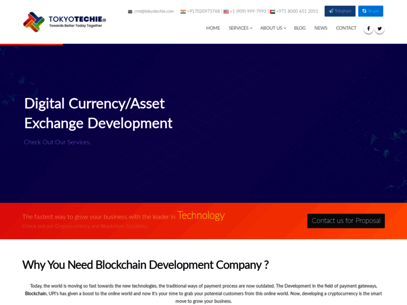 Website's screenshot : Blockchain development