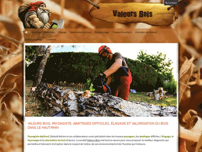 Paysagiste Abattages Elagage et Valorisation du bois dans le haut-rhin