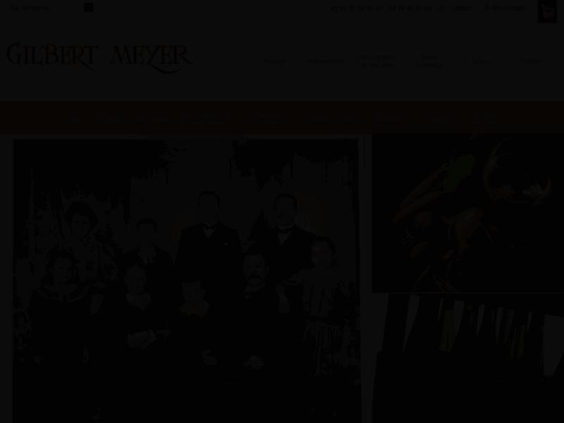 Domaine Meyer à Voegtlinshoffen, production et vente de vins et crémants